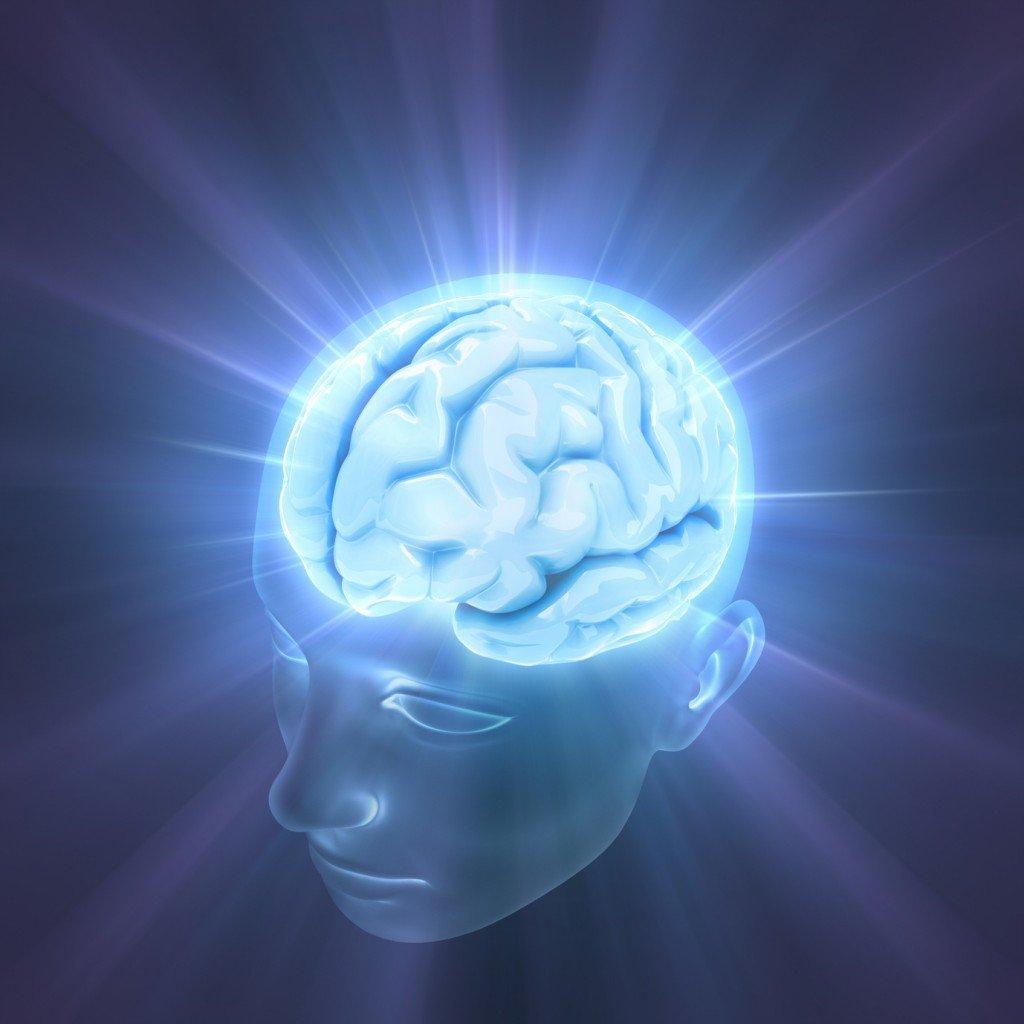 Действительно ли за наше осознание ответственен мозг?