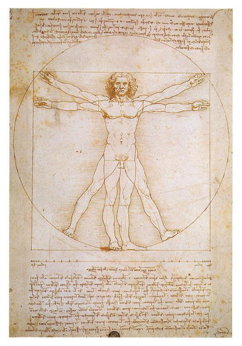Человек . Леонардо да Винчи.
