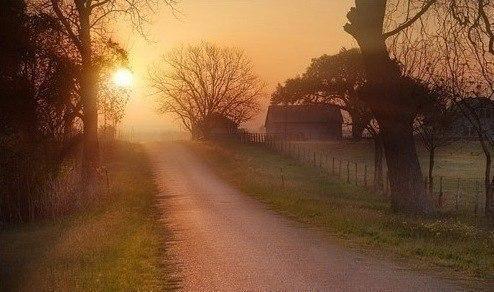 У лжи широкая дорога. У правды - узкая тропа.