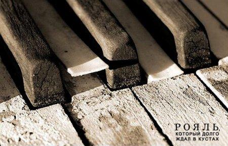Рояль в кустах